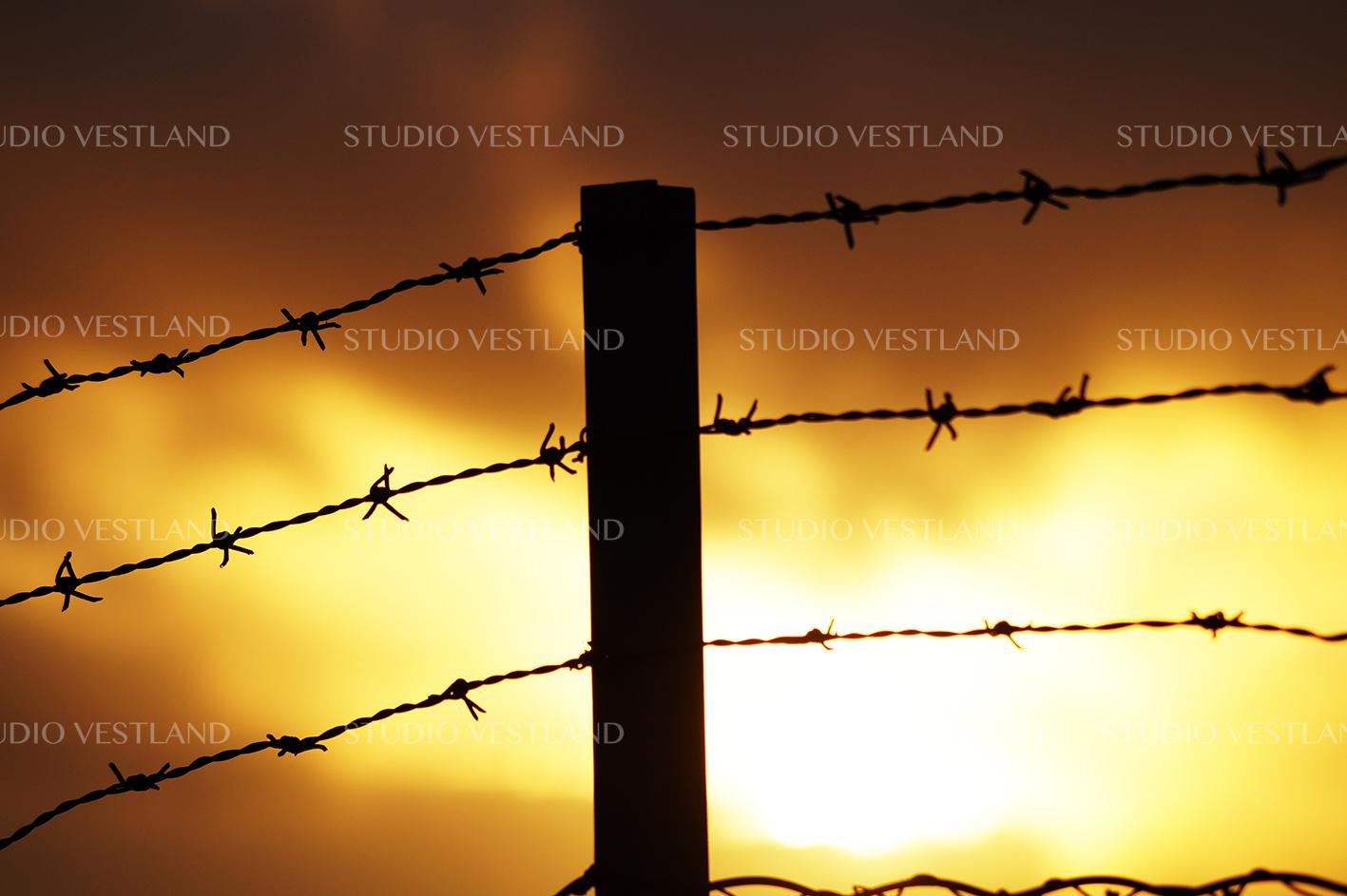 Studio Vestland - Gjerde 03