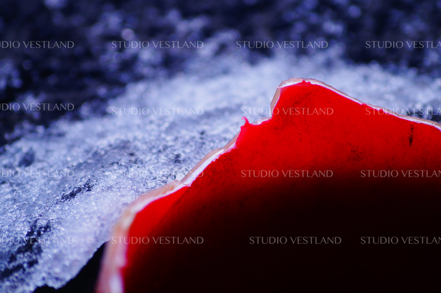 Studio Vestland - Iskant