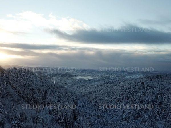 Studio Vestland - Bergen V39