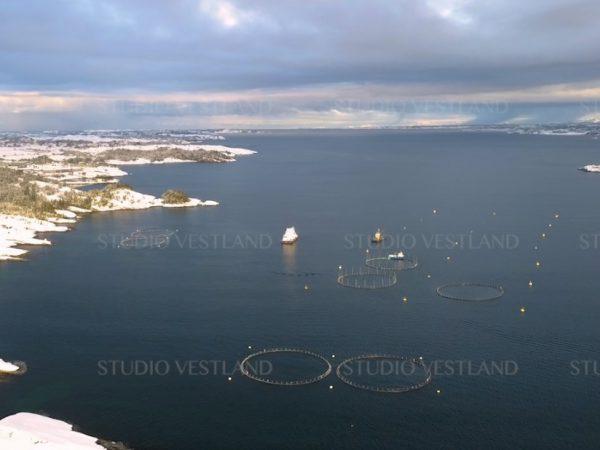 Studio Vestland - Øygarden V19