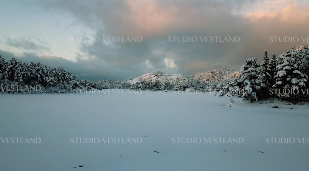 Studio Vestland - Tennebekk V01