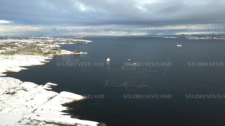 Studio Vestland - Øygarden 24